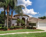 4814 Artesian Road, Land O' Lakes image