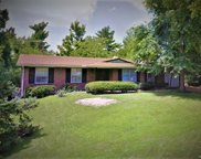 1317 Orchard Lakes  Drive, St Louis image