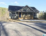 5465 Red Valley Rd, Remlap image