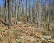 00 Lot 9 Coon Creek Road, Franklin image