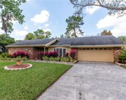 12210 Snead Place, Tampa image