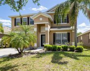 5365 Pepper Brush Cove, Apopka image