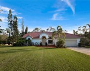 6210 Copper Leaf Ln, Naples image
