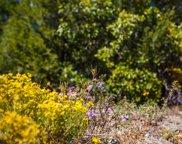 32 Granny Canyon  Trail, Tijeras image