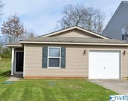 319 Counterpoint Drive, Harvest image