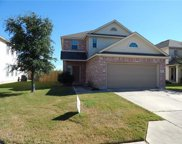 1230 Arbor Knot Dr, Kyle image