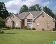 311 Shelby Forest Dr, Chelsea image