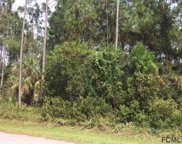 12 Buttermill Dr, Palm Coast image