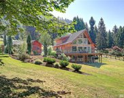 16335 Tiger Mountain Rd SE, Issaquah image