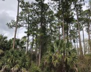 13 Richfield Ln, Palm Coast image