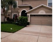 13351 Graham Yarden Drive, Riverview image