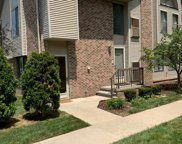 42475 LILLEY POINTE, Canton Twp image