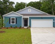 238 Captiva Cove Loop, Pawleys Island image