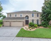 7452 Night Heron Drive, Land O Lakes image