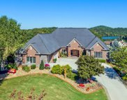 811 Rarity Bay Pkwy, Vonore image