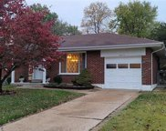 10111 Maryvale  Lane, St Louis image