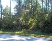 17 Potterville Lane, Palm Coast image