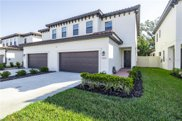 13023 Sanctuary Village Lane, Tampa image
