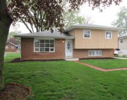 6240 Puffer Road, Downers Grove image