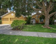 10203 Ashley Oaks Drive, Riverview image