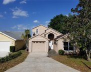 1131 Orange Grove Lane, Apopka image