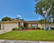 3106 Swan Lane, Safety Harbor image