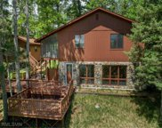 47023 Black Bear Beach Road, Forest image