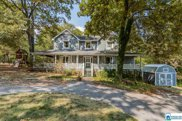 590 Myers Rd, Odenville image