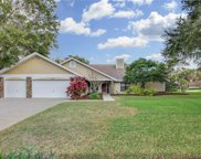 18236 Clear Lake Drive, Lutz image