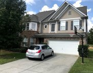 14312  Winged Teal Road, Charlotte image