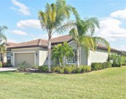 20359 Black Tree LN, Estero image