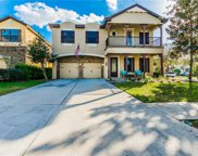 20301 Chestnut Grove Drive, Tampa image