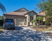20306 Heritage Point Drive, Tampa image