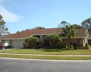 3994 Belmoor Drive, Palm Harbor image