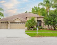 18004 Royal Forest Drive, Tampa image