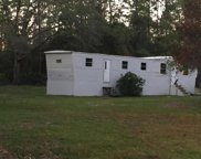 5210 BUCK LN, Middleburg image