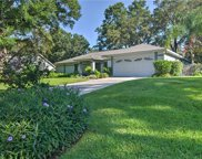 1018 Hollyberry Court, Brandon image