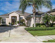 14150 Fox Glove Street, Winter Garden image