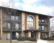 7300 Evergreen Drive Unit 2D, Orland Park image
