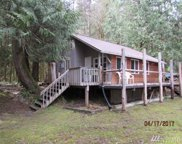 11129 Riverview Dr E, Greenwater image