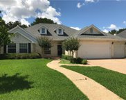 29005 Colonial Dr, Georgetown image