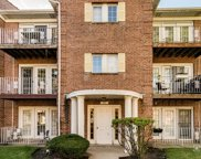 684 Quincy Bridge Lane Unit 201, Glenview image