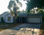 8749 Chatham ST, Fort Myers image
