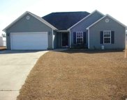 208 Hickory Springs Ct, Conway image