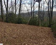 122 Indian Pipe Trail, Landrum image