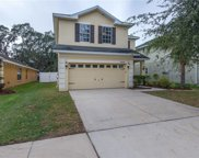11104 Goldenrod Fern Drive, Riverview image