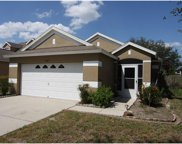 10403 Lakeside Vista Drive, Riverview image