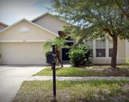 10409 River Bream Drive, Riverview image