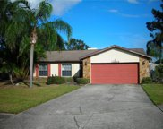12804 Slippery Elm Court, Riverview image
