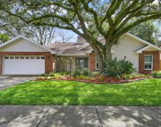 11403 E Queensway Drive, Temple Terrace image